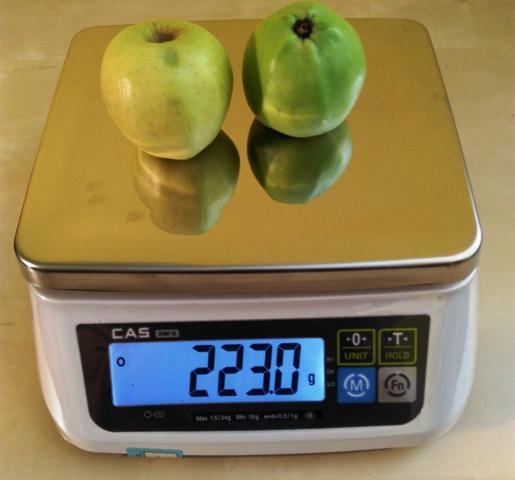 Kuchynská váha - gastro CAS SW 2