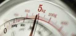 Váhy pre gastronómiu
